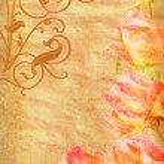 ram från rosa rosor grunge — Stockfoto