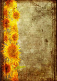 Frame from sunflower grunge — Stock Photo