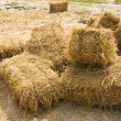 Stock Photo: Straw for Cattle