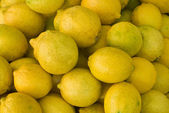Yellow lime background — Stock Photo