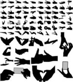 Largest collection of vector arms, hands. — Stock Vector