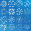 Snowflake Selection — Stock Vector