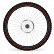 Bike wheel — Image vectorielle
