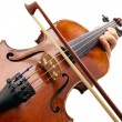 Постер, плакат: Playing Violin on white backround