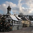 Town Hall and Christmas tree - Lizenzfreies Foto