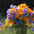 Mixed colorful bouquet - Stock Photo