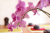 Pink Orchid and Yoga Cushion — Stock Photo