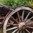 Old wagon wheel with flowers in the background — Stock Photo