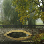 Morning in autumn park, bridge, fallen leaves — Stock Photo #4098388
