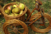 Basket weaving — Stock Photo