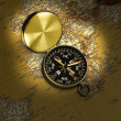 Golden compass — Stock Photo