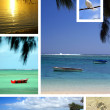 Tropical beach collage — Stock Photo