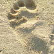 Imprint of left foot in sand — Stock Photo