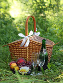 Basket for picnic — Stock Photo