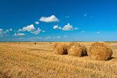 Tres pilas de heno — Foto de Stock