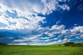 Letnie krajobrazy — Zdjęcie stockowe
