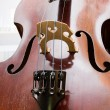 Age-old bass viol — Stock Photo #4408421
