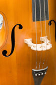 Age-old bass viol — Stock Photo