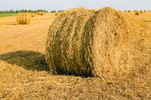 Straw stack — Stock Photo