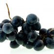 Stock Photo: Dark blue grapes