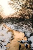 Sunset over small river — Stock Photo