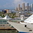 Stock Photo: Cruise Ship in Port of Miami