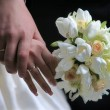 Hands of groom and bride — Stockfoto