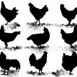 Silhouette of hens - Stock Vector