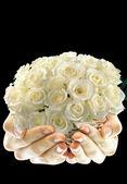 Rosas blancas — Foto de Stock