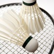 Badminton shuttlecocks on racket — Stok Fotoğraf #3934446