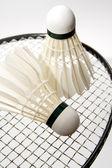 Badminton shuttlecocks on the racket — Stock Photo