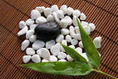 Stones and bamboo leaves — Stock Photo