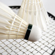 Foto de Stock  : Badminton shuttlecocks on racket. Horizontal