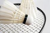 Volantes badminton en la raqueta. horizontal — Foto de Stock
