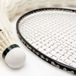 Row of shuttlecocks with  racket — Stockfoto
