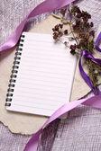 ロマンチックなノートの背景 — ストック写真
