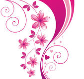 Pink flower. Floral background — Stock Vector