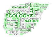 Nuvola di tag ecologia — Vettoriale Stock