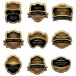Set of vintage gold labels — Stock Vector