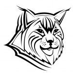 Lynx mascot — Stock Vector #4657776