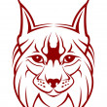 Lynx mascot — Stock Vector #4657811