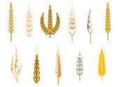 Tarım sembolleri — Stok Vektör