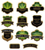 Sada štítků: zelené a zlaté — Stock vektor
