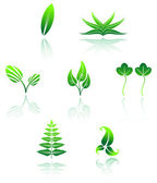 Set of leaves icon — Stock Vector