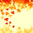 Autumn leaves background - Stock vektor