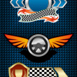 Racing symbols and icons — Stock Vector