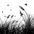 Meadow silhouettes — Stockvector #5050338