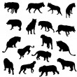 Set of wolves, tigers, leopareds and lions silhouettes — Stock Vector