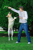 Man playing with the dog — Stock Photo