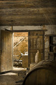 Old Abandoned Wine Cellar — Stock Photo